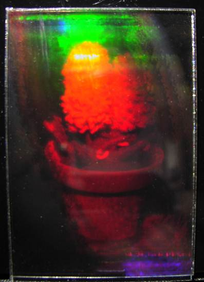 Holography pg  7 - Exposing the Holographic Plate