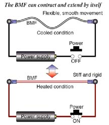 biometal fiber